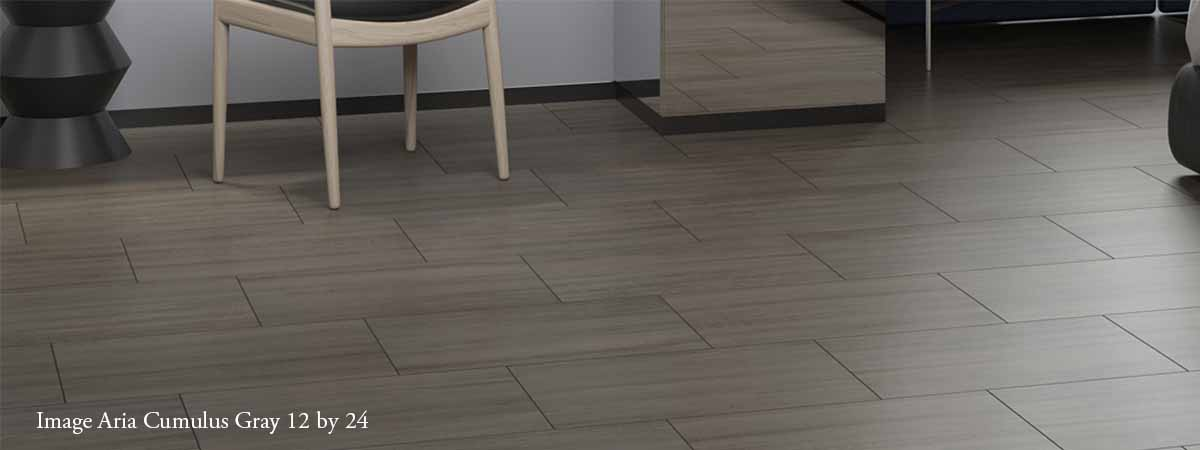 Modern Image Interiors Tile Floor
